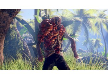Techland Dead Island Definitive Collection PS4